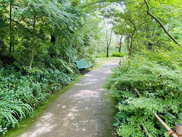 モネの庭 睡蓮の咲く池の道