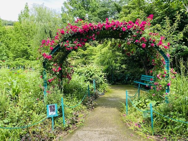 モネの庭バラのアーチ