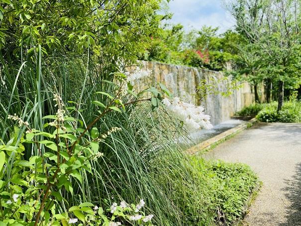 モネの庭 滝