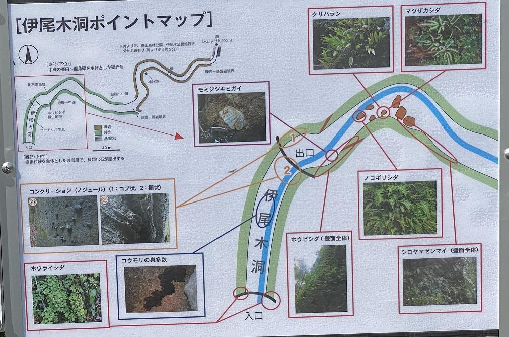 伊尾木洞のポイントマップ