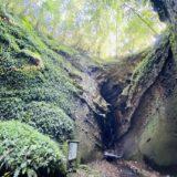 伊尾木洞とシダ群落 神秘の洞窟と幻想的な世界 天然記念物 安芸市