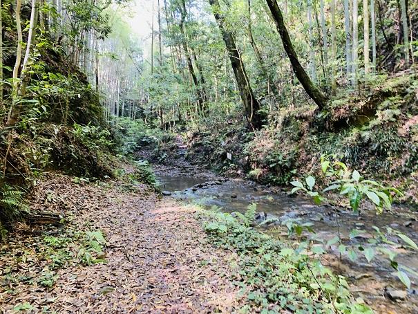 伊尾木洞 滝まであと100mから