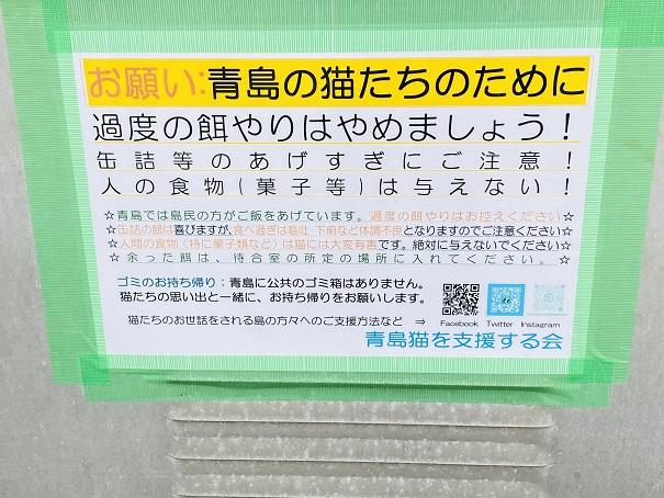 青島猫のえさ場 注意事項