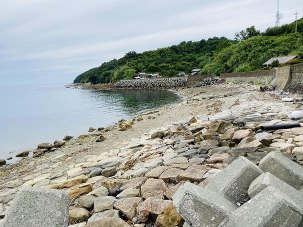 青島 海岸