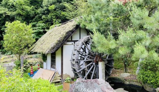 ほたる見公園 幻想的なホタルが見れる 金倉川 まんのう町
