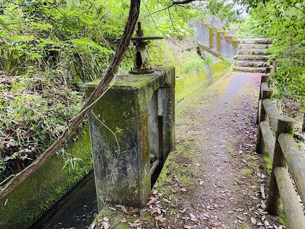 ほたる見公園 用水路南側