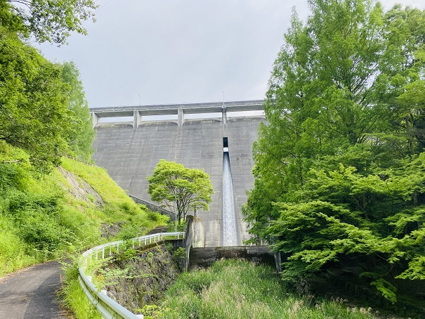 田万ダム公園から見たダム