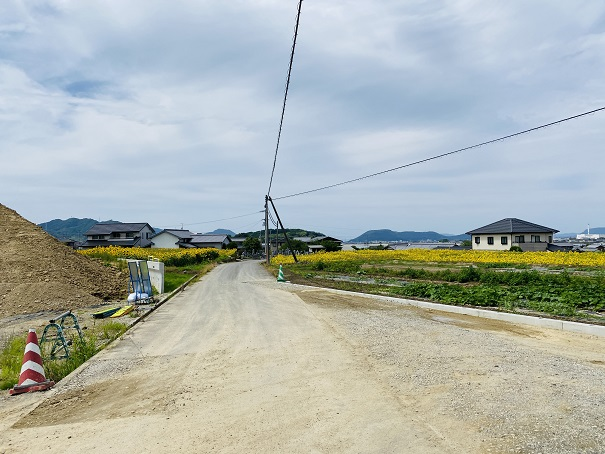 香南町ひまわり畑 さらに