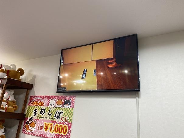 倉敷豆柴カフェ 注意事項案内