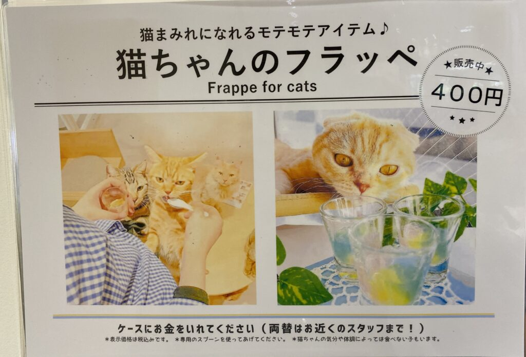 Moff animal cafeアリオ倉敷店猫のフラッペ案内