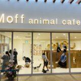Moff animal cafeアリオ倉敷店