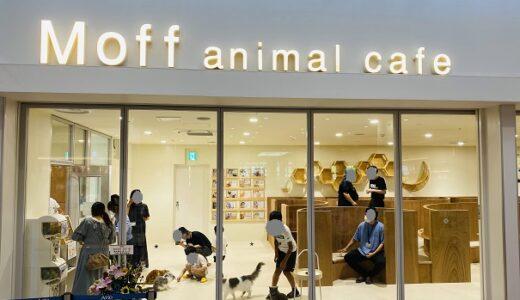Moff animal cafeアリオ倉敷店 猫カフェで遊ぶ オープン