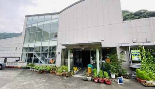 美郷ほたる館 天然記念物の美しく光るホタル鑑賞 吉野川市