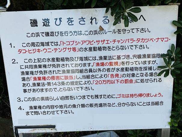 採取禁止の水産動植物看板