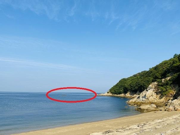 海の湾の中側の穏やかな海で魚を突く