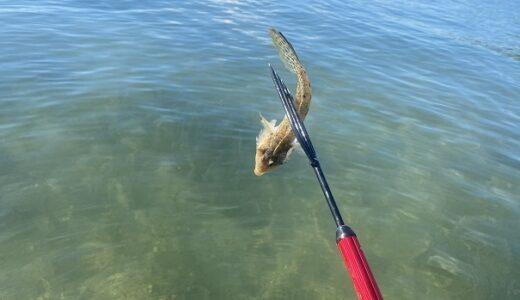 銛で食べれる魚を突く方法 道具 海や川で安全に楽しむ準備