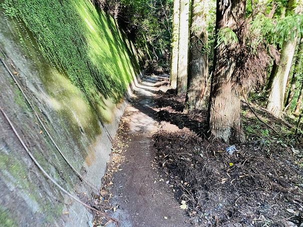 赤松川 弁天階段の先の道