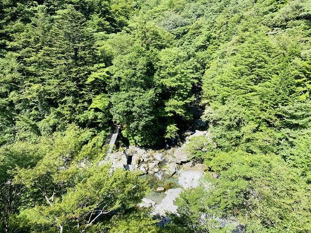 瀬戸川渓谷展望所からの景色
