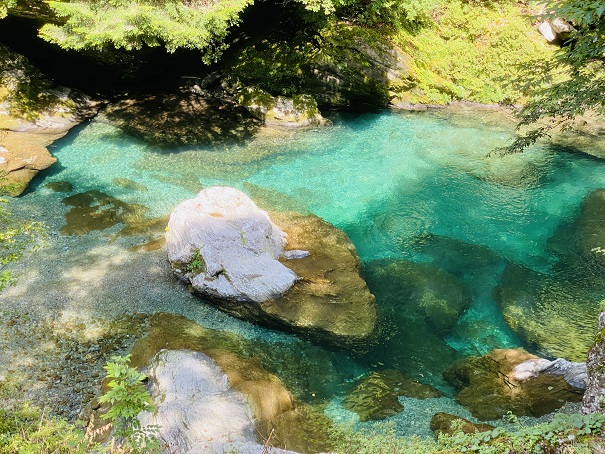 瀬戸川渓谷 えめらるどの池