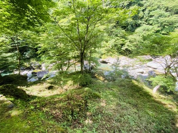 瀬戸川渓谷 緑の中