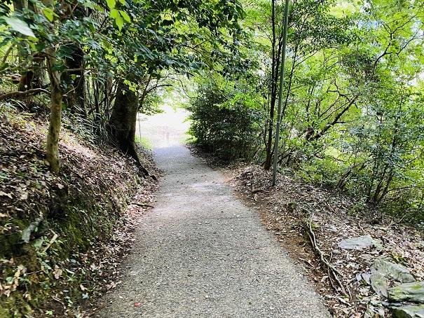 帰全山公園キャンプ場への道