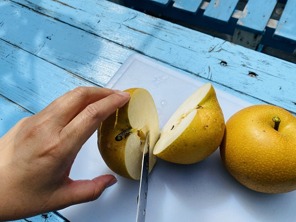 フルーツガーデンやまがた 梨を切る