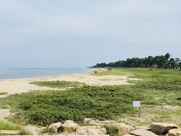 織田ヶ浜海水浴場 ハマビシ