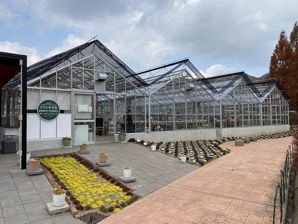 タオル美術館 ヨーロピアンガーデン 温室