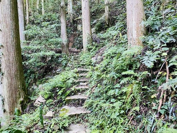 薬師谷渓谷 遊歩道階段