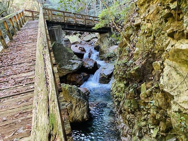 薬師谷渓谷 川の流れと木の遊歩道